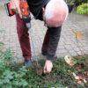Anvendelse af plantebor
