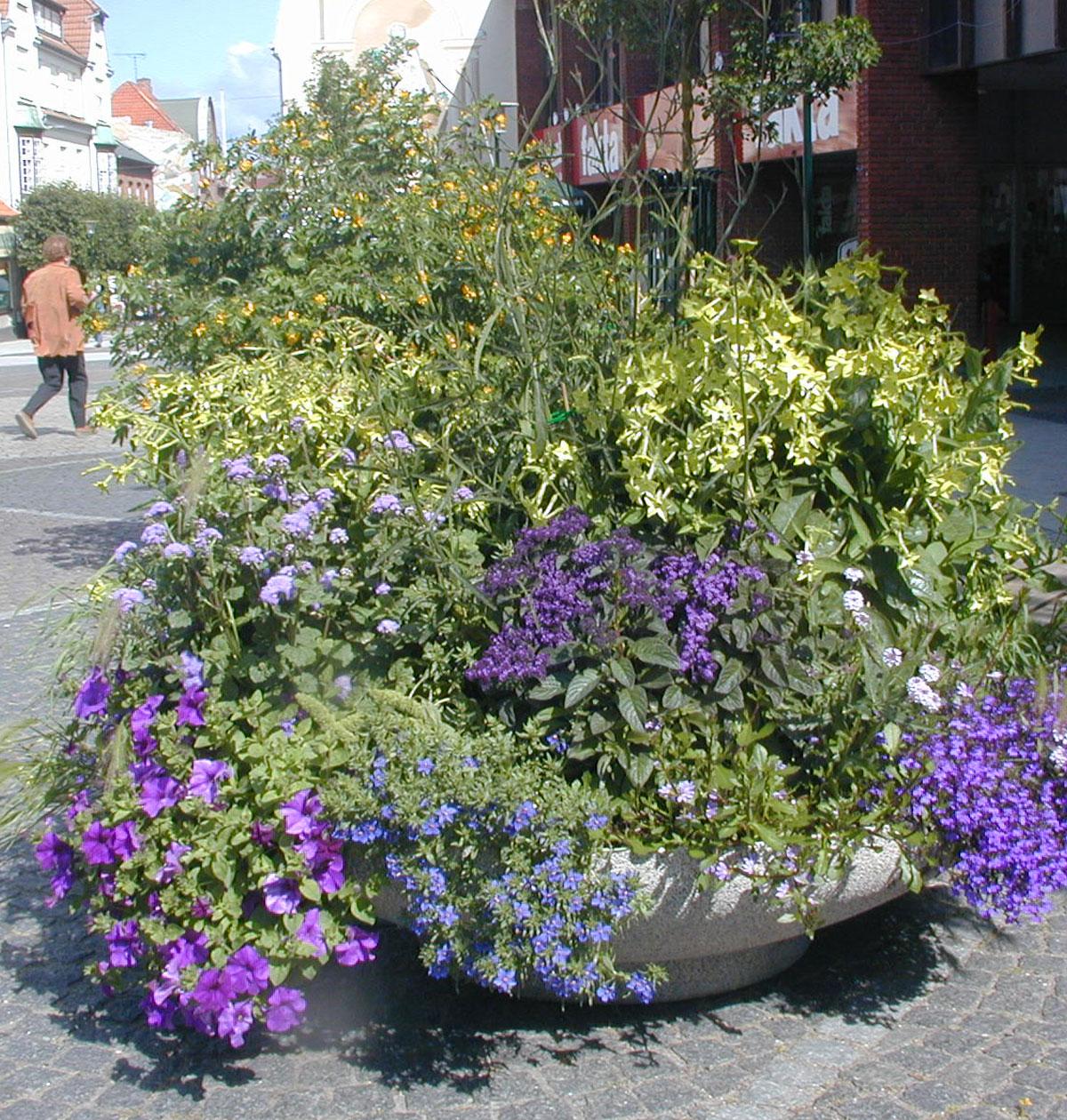 Vordingborg Kommune Oas 160 plantekumme